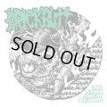 BRICKBUTT / The stupid sons of diplomats (cd) Spooky bank