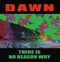 "DAWN / There is no reason why (10"") Debauch mood"