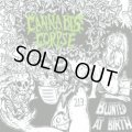 CANNABIS CORPSE / Blunted At Birth (cd) Forcefield Records