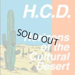 画像1: HARDCORE DUDE / HORIZONS OF THE CULTURAL DESERT (cd) HARD CORE KITCHEN