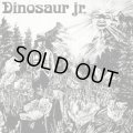 Dinosaur Jr. / Dinosaur (cd) Merge Records