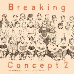 画像1: V.A / Breaking Concept vol.2 (cd) Impulse
