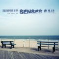 SENSES FAIL / Follow Your Bliss: The Best Of Senses Fail (2cd) Ice grill$
