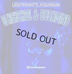 画像1: DJ HIGHSCHOOL & BUSHMIND / Lieutenant's aquarium (cdr) Seminishukei