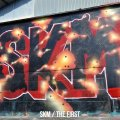 SKM / The first (cd) One family