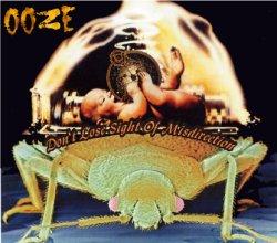 画像1: OOZE / Don't lose sight of misdirection (cd) Hardcore kitchen