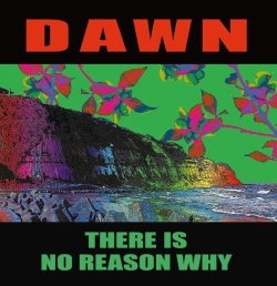 "画像1: DAWN / There is no reason why (10"") Debauch mood"