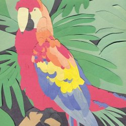 画像1: ALGERNON CADWALLADER / Parrot files (cdr)(Lp)(tape) Lauren