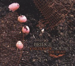 画像1: BRIDGE TO SOLACE / Kingdom of the dead (cd) Let it burn