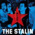 THE STALIN / 豚に真珠 ~Live at 横浜国立大学1980.11~ (cd) 北極バクテリア