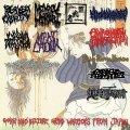 ■予約商品■ V.A. / Gore and bizarre grind warriors from japan (cd) Happy despatch productions