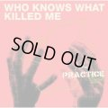 THE PRACTICE / Who Knows What Killed Me (cd) DIWPHALANX