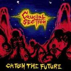 画像1: CRUCIAL SECTION / catch the future (cd) 男道